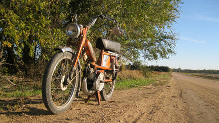 1979 motobecane by leleva
