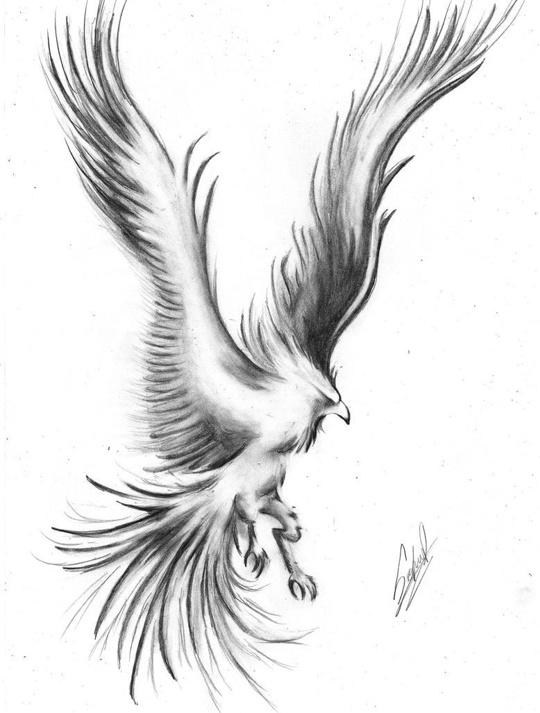 Leon Dibujo A Lapiz