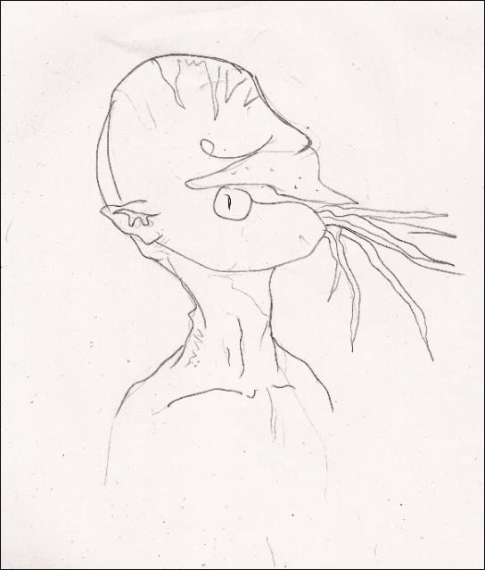 sudonautilus by tuscriaturas