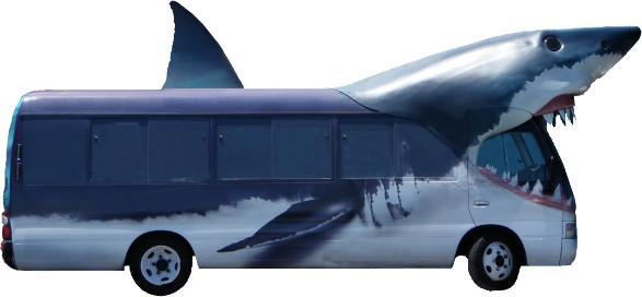 Los Sharkbús