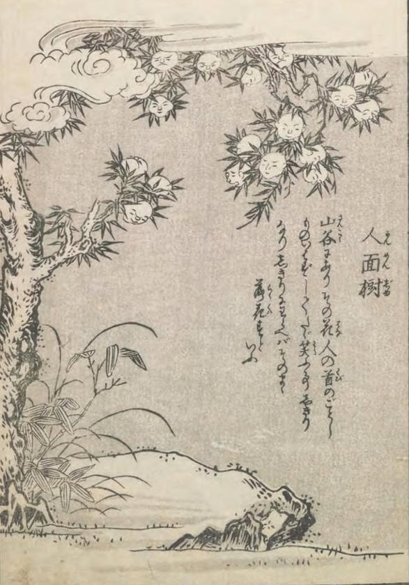 Ninmenju en el Konjaku Hyakki Shūi, por Toriyama Sekien