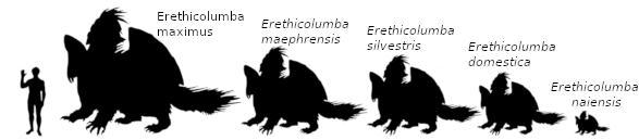 Comparativa entre las diferentes subespecies de Palomaespines por Jakeukalane