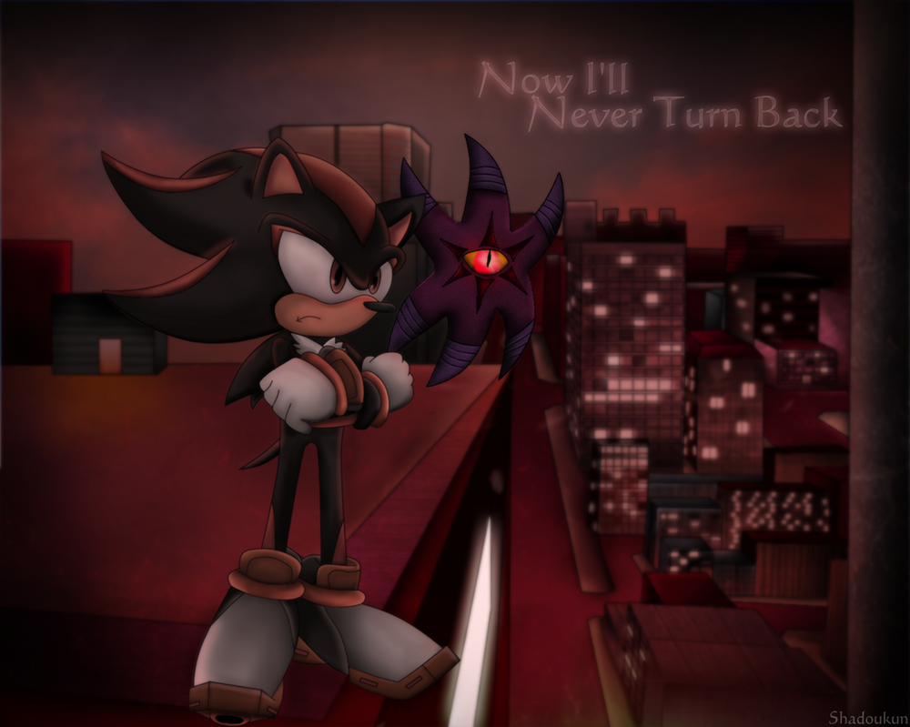 Shadow The Hedgehog - Now I'll Never Turn Back by Shadoukun