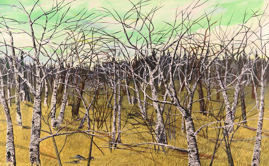Birches 1 by franzen81
