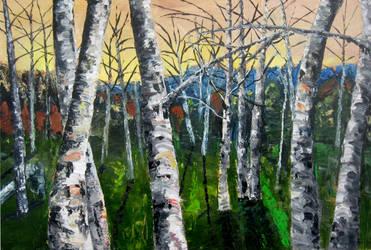 Dancing Birches by franzen81