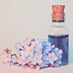 Bottled Colours - Indigo by Cute-And-Bright