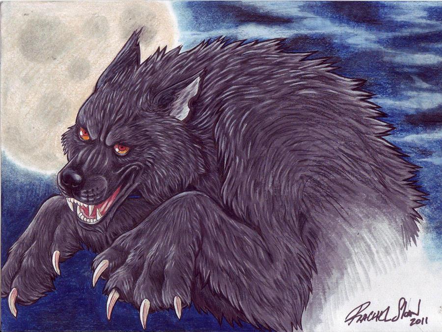 Werewolf by rachelsloan