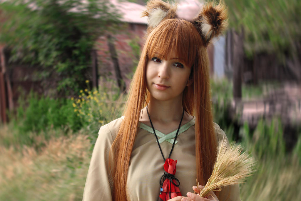 Horo Spice and Wolf Cosplay by Livy-Livy