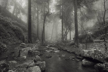 Wyming Brook by Mohain