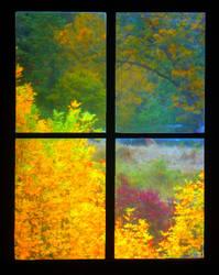 WINDOW to FALL by THOM-B-FOTO