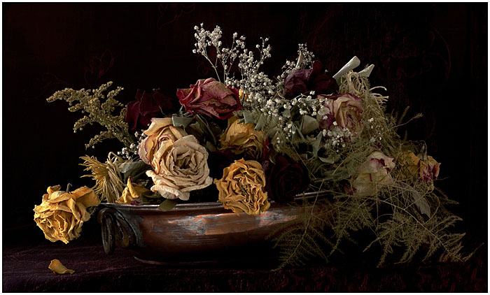 DEAD FLOWERS IN HDR by THOM-B-FOTO