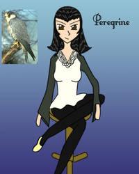 Ace - Peregrine - Falcon