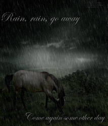 Horse in the rain manip by horselover4495