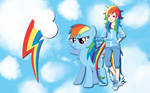 Human Rainbow Dash WP