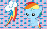 Baby Rainbow Dash WP