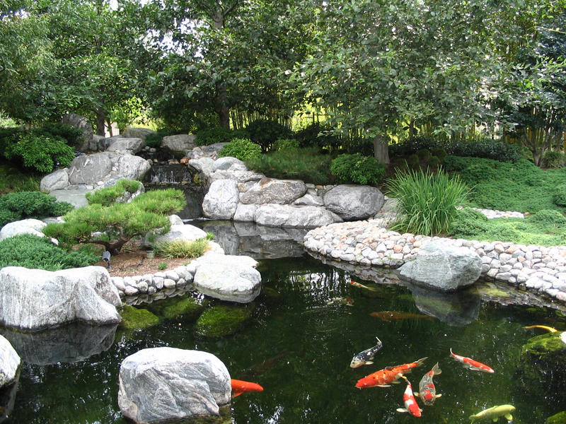 japanese garden koi pond by ryuaku