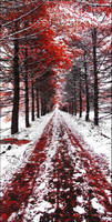 Bloody Autumn (wide view)
