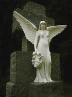 Angel by RuinumRomanticus