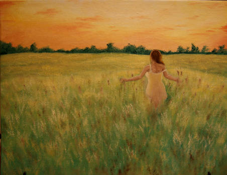 Evening fields