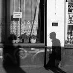 city of shadows 003