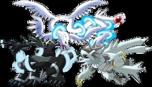 Contest Alternate dragons