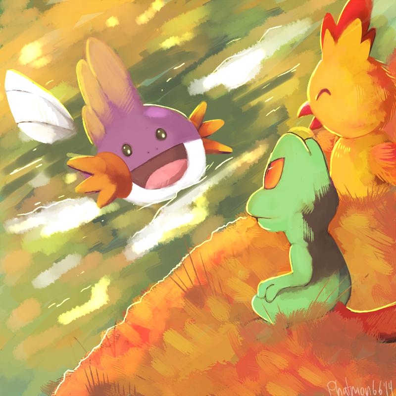 Pokemon Omega Ruby and Alpha Sapphire starters by Phatmon ...