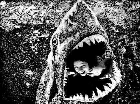 Jaws Of Death- Rice art