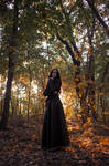 Yennefer of Vengerberg (The Witcher books)