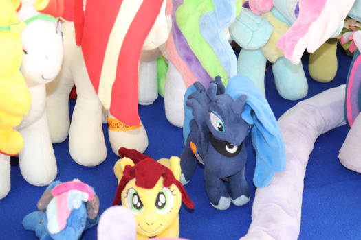 Galacon Coffline 2021 Picture collection pic 18
