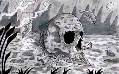 Skull by Asgrimson