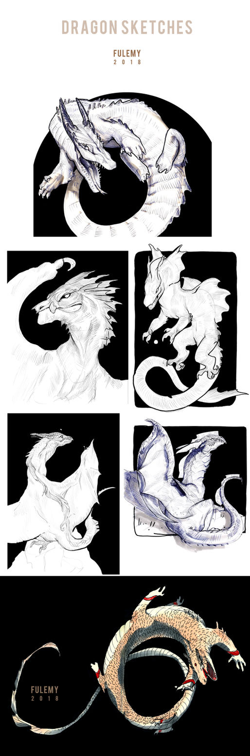 Dragon Sketches 2018 2 by Fulemy