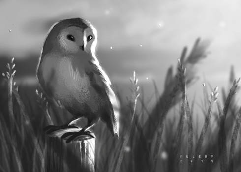 Quick Grayscale Painting of an Owl