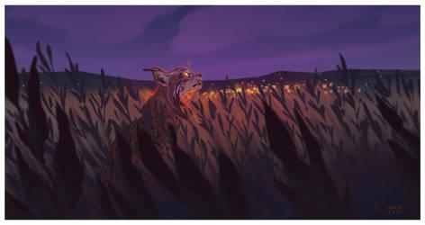 Iberian Lynx - Vulnerable Animals Week