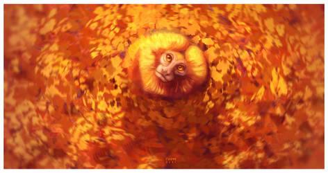 Golden Lion Tamarin - Vulnerable Animals Week