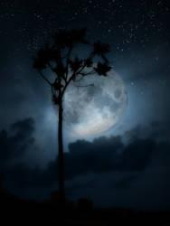 Luna by Callodus