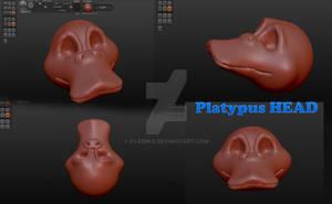 sculpting Platypus HEAD