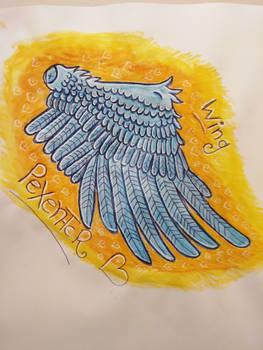 bird Wing  -practicing drawing