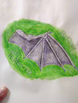 Bat Wing - practicing drawing
