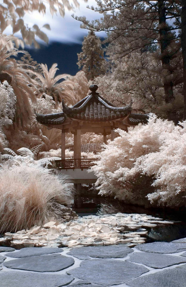 Chinese Garden, Nelson by visibleinvisible