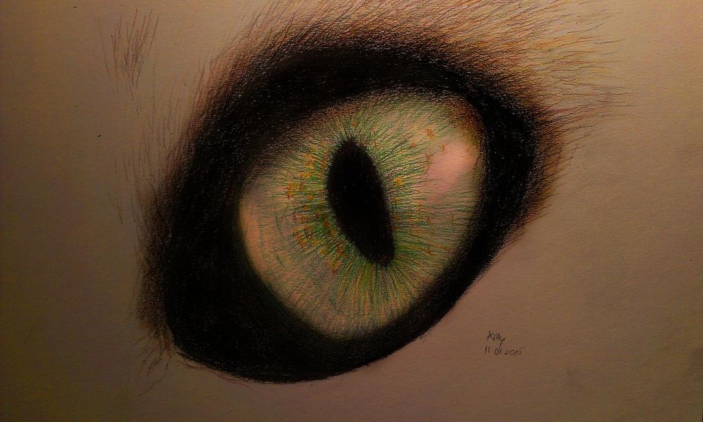 Eye see you by kittyliciousme