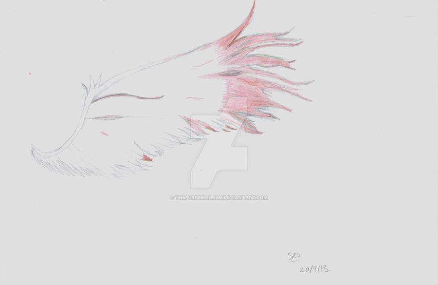Wing! by ThePurpleNinjah