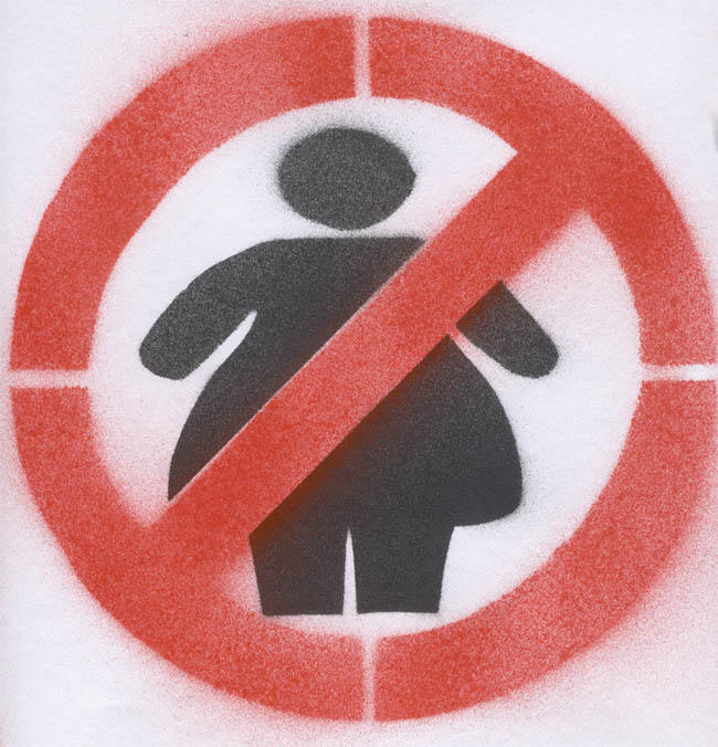 No Fat Chicks Stencil by scorch87