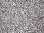 9. pebbles