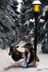 little girls winter dream