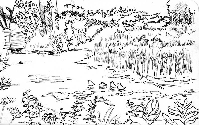 Matthei pond by phodyr