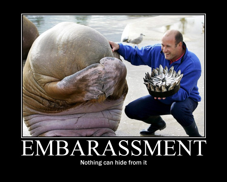Demotivational Birthday Walrus By Megamothius On Deviantart