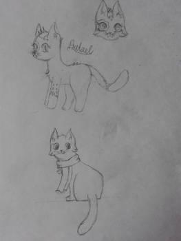 Cats cats!