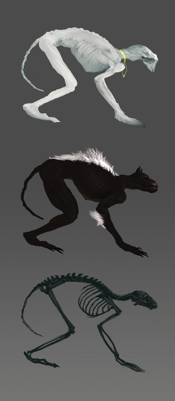 concepts by Estrada