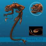 Dragon Fish - Mermay 2020