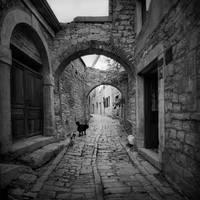 a walk in the old town by lejaaaaaaaa